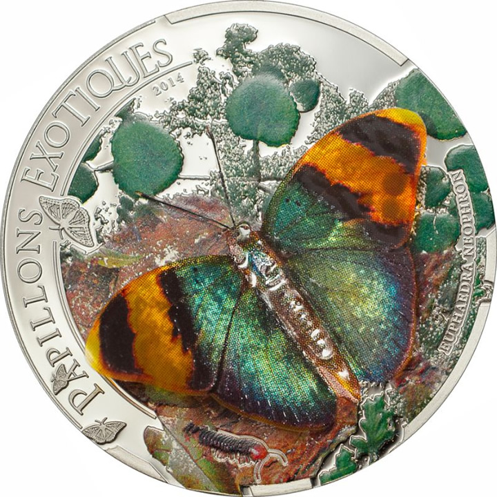 2014 CENTRAL AFRICAN REPUBLIC - Papillons Exotiques 3D - Ag Proof